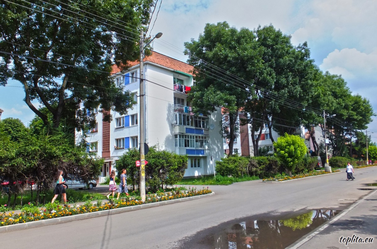 Cerbului Neighborhood