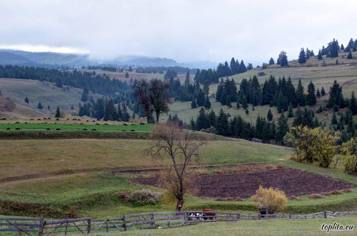 Giurgeului Mountains