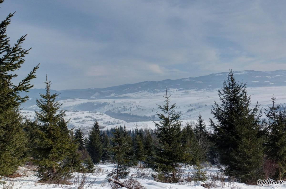 Calimani Mountains