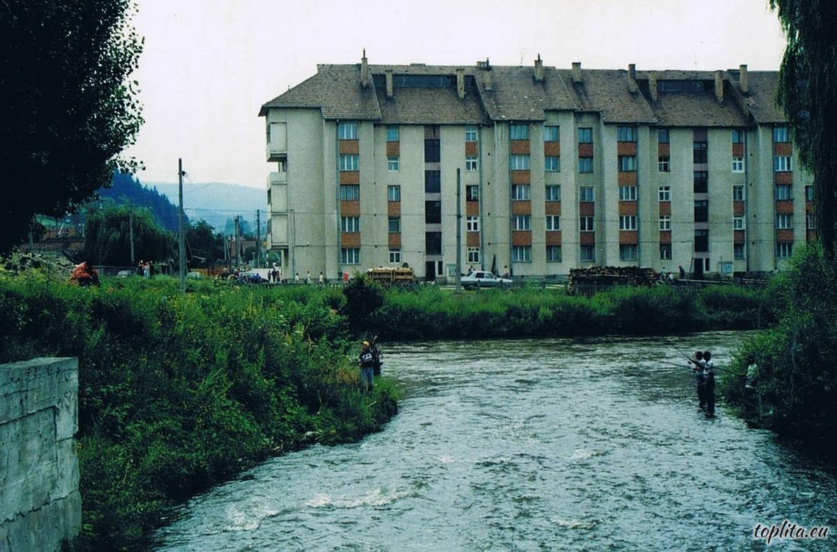Pârâul Valea Topliţei