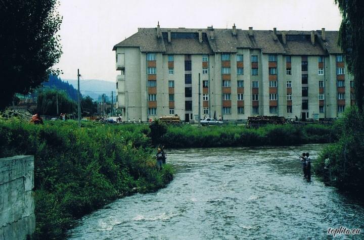 Valea Toplitei Creek